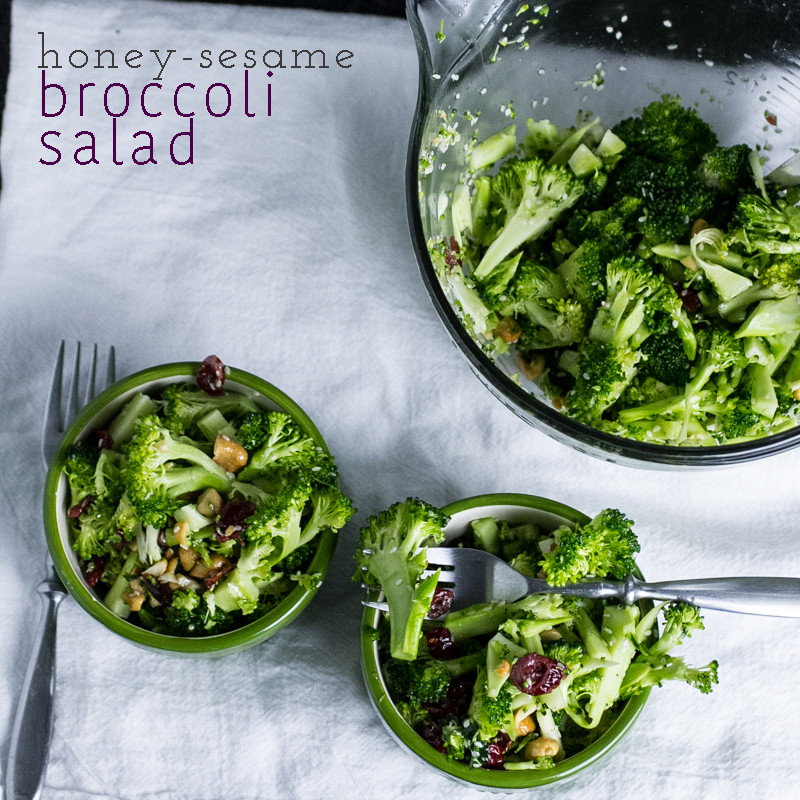 Honey-sesame broccoli salad is a delicious and light side dish for your picnic, weeknight dinner, or your lunchbox! | chattavore.com