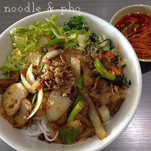 Noodle and Pho Vietnamese Cuisine - Chattavore